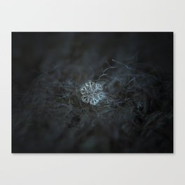 Real snowflake macro photo: Alcor Canvas Print