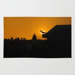 Pigeon Eclipse2 Rug