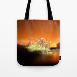 Face away from the oncoming storm Tote Bag