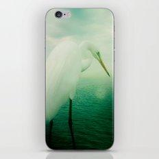 White Egret iPhone & iPod Skin