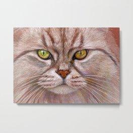 White Cat CC15-01 Metal Print