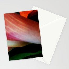 Faded Kayla Lily Stationery Cards