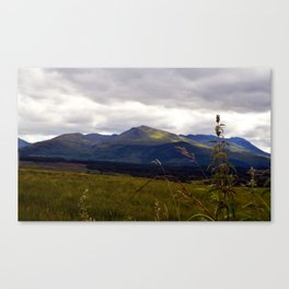 Another Scottish Highland Landscape Canvas Print