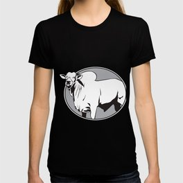 Bull zebu vintage logo T-shirt