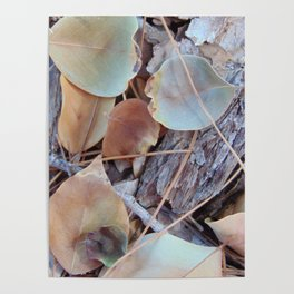 Fallen Leaves Texture Study Poster