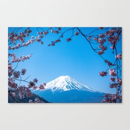 Mount Fuji in spring Canvas Print