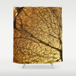 GoldenCola Shower Curtain