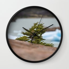 Patagonian Tree Wall Clock