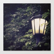 Overgrown Lamp Canvas Print