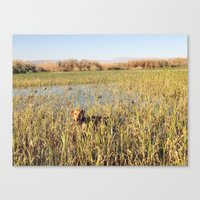 hunting Canvas Prints featuring HUNTING by blake allan