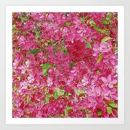 GREEN & FUCHSIA PINK CRABAPPLE FLOWER SPRING ART Art Print