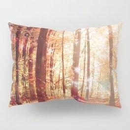 A Soul On Fire Pillow Sham