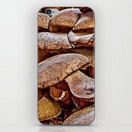 Mushroom Colony iPhone Skin