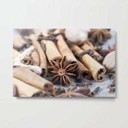 cinnamon and anise with nutmeg Metal Print