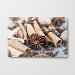 cinnamon and anise with nutmeg Metal Print