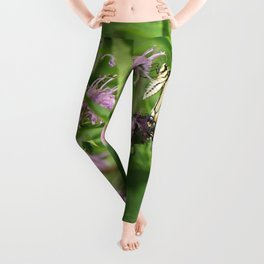 Tiger Swallowtail Leggings