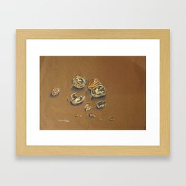 walnuts  Framed Art Print