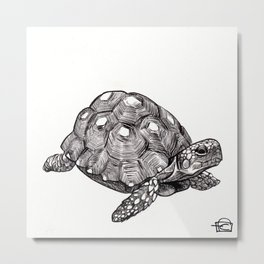 The Tortoise Metal Print