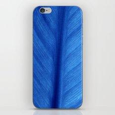 blue leaf iPhone & iPod Skin