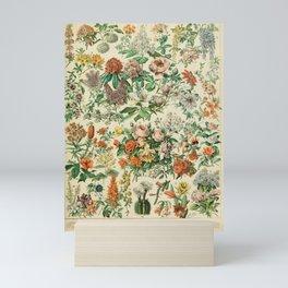 french vintage adolphe millot Mini Art Print