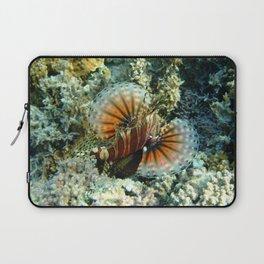 Lionfish at Ha'atafu Beach Laptop Sleeve