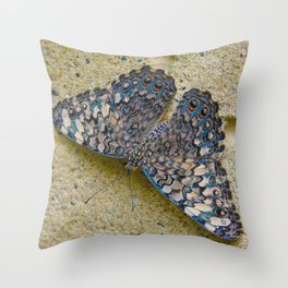 Turquoise and Sand Butterfly by Teresa Thompson Throw Pillow