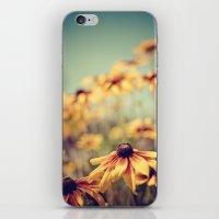sunshine iPhone & iPod Skins featuring sunshine by shannonblue