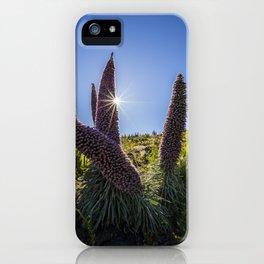 Tajinastes flower iPhone Case