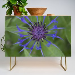 Thin blue flames in a sea of green Credenza