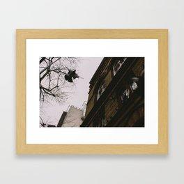 Flying by Framed Art Print