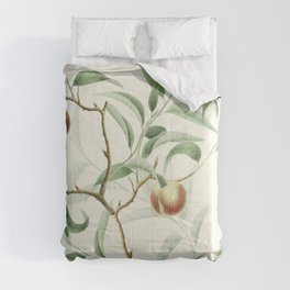 The Golden Apples of the Sun Comforters