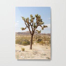 Joshua Tree California Landscape I Vertical Color Metal Print