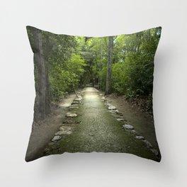 Mayan Path Throw Pillow