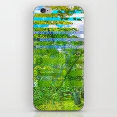 Landscape of My Heart (segment 1) iPhone & iPod Skin