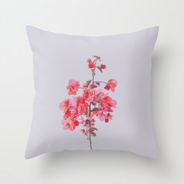 Sweet Pink Bougainvilleas Throw Pillow