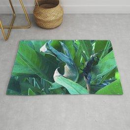 Fine Art Bird of Paradise Luxurious Leaves Rug