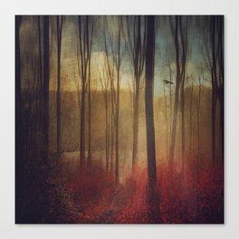 light weavers Canvas Print