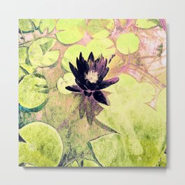 Black Waterlily Metal Print