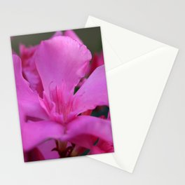 Pink Oleander Flower With Green Leaves in the Background Stationery Cards