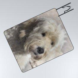 Dog Goldendoodle Golden Doodle Picnic Blanket