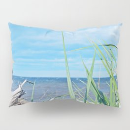 Through Grass and Driftwood Pillow Sham