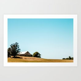Spring Fades To Summer Art Print
