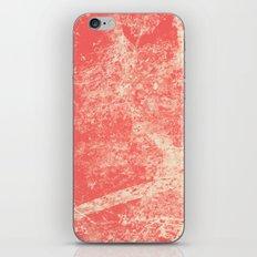 1432 iPhone & iPod Skin