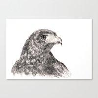 hawk Canvas Prints featuring Hawk by Averin Art