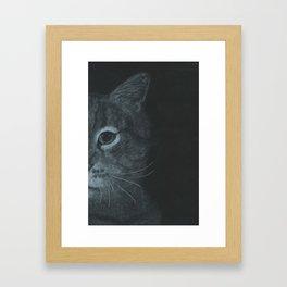Cat Close Up Framed Art Print