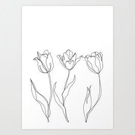 Botanical illustration line drawing - Three Tulips Art Print