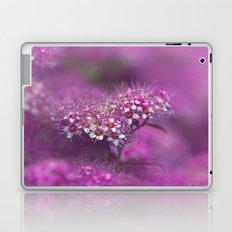Dream in pink Laptop & iPad Skin