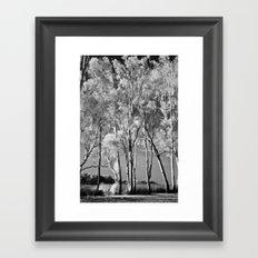 Ghost Gums Framed Art Print