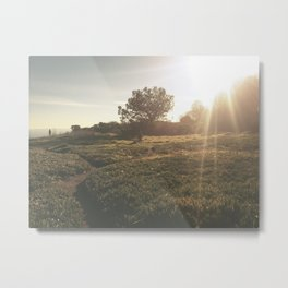 Field Metal Print