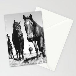 WILD HORSES Stationery Cards
